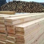 نقش چوب در زندگی